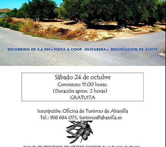 El Olivar de Abanilla 24 10 2015