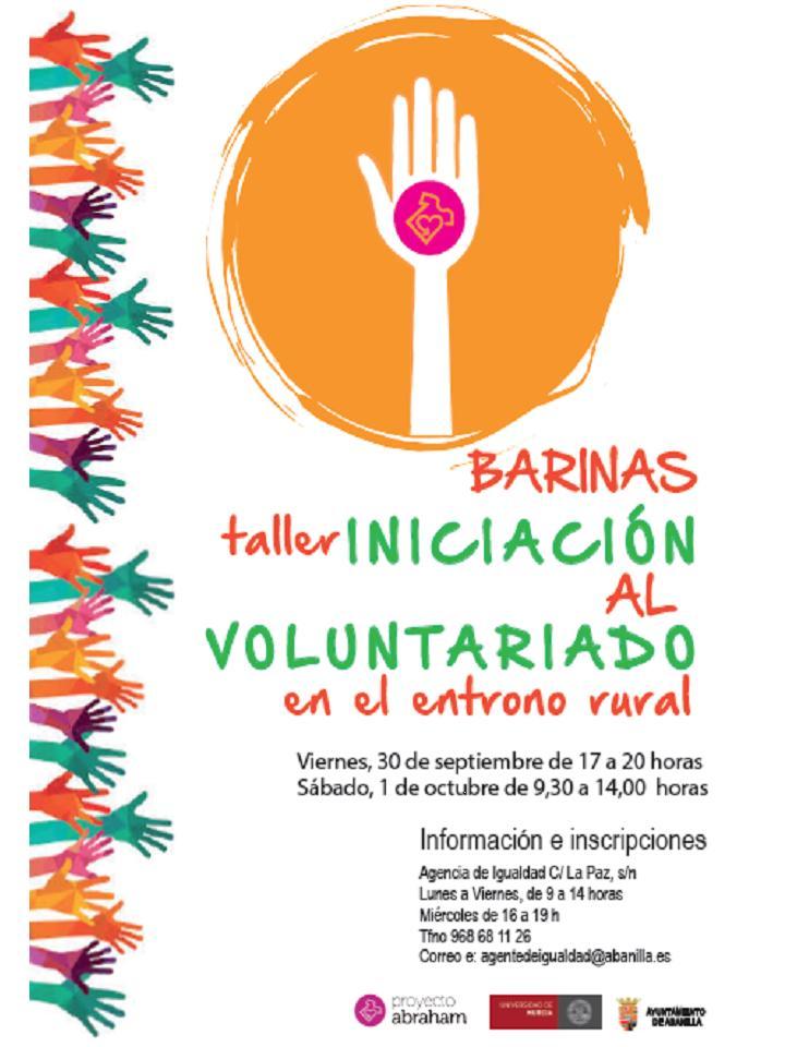voluntariado web